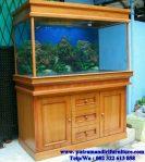 aquarium ikan kayu jati